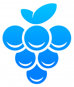 Grape partner logo blue